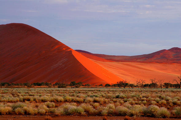 Dunes of the Namib.